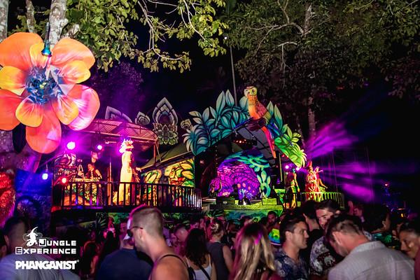 Jungle Experience 08 January 2020